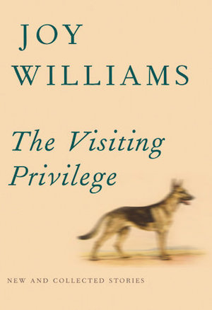 The-Visiting-Privilege